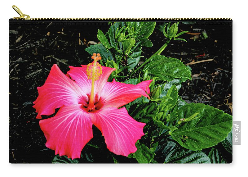 Flower Carry-all Pouch featuring the digital art La cayena by Daniel Cornell