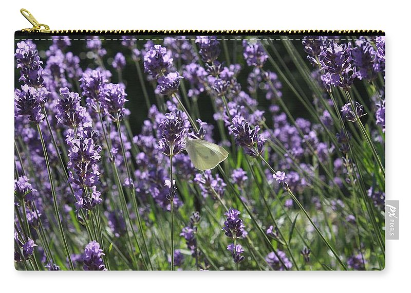 Lavender Carry-all Pouch featuring the photograph Lavender by Vicki Cridland