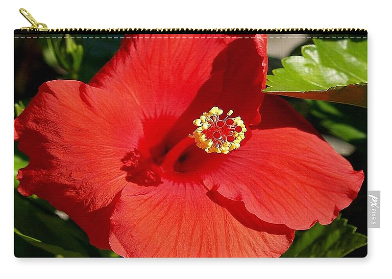 Fine Art Photography Carry-all Pouch featuring the photograph Leila by Patricia Griffin Brett