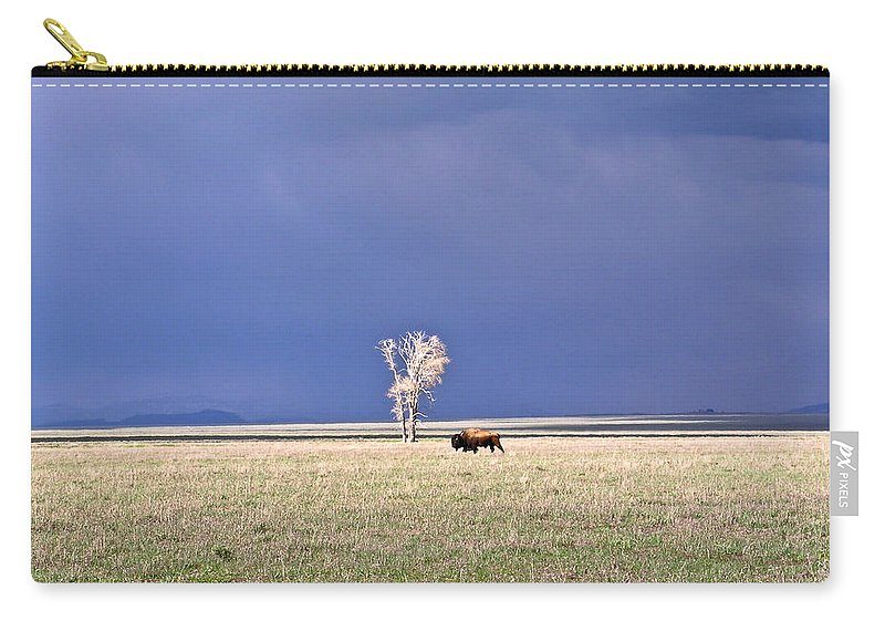 Lone Carry-all Pouch featuring the photograph Lone Buffalo After Storm by Douglas Barnett