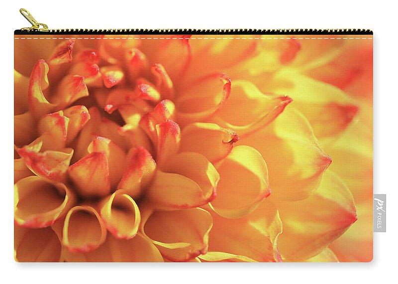 Mirella Dahlia Carry-all Pouch featuring the photograph Orange Mirella Dahlia Flower by Trevor Slauenwhite