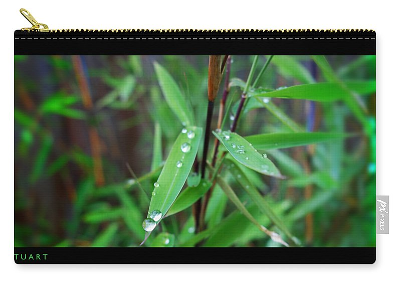 Rain Drops Carry-all Pouch featuring the painting Rain On Bamboo by Charles Stuart