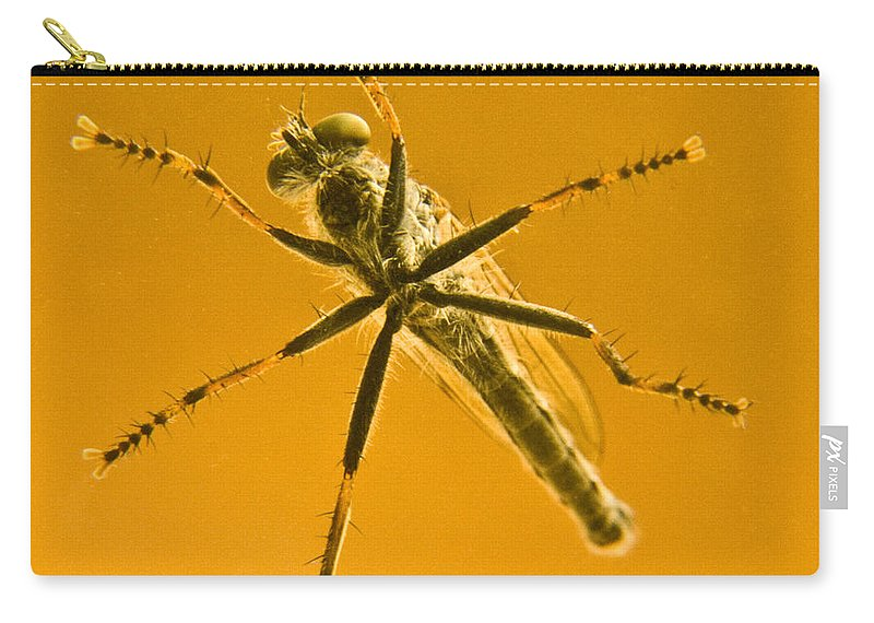 Robber Carry-all Pouch featuring the photograph Robber Fly by Douglas Barnett