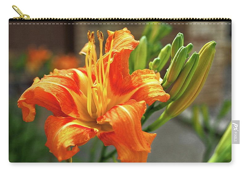 Orange Carry-all Pouch featuring the photograph Spring Flower 14 by C Winslow Shafer