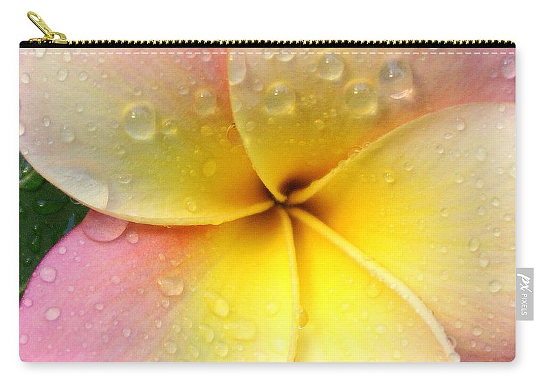 Frangapani Carry-all Pouch featuring the photograph Sun Shower by Holly Kempe