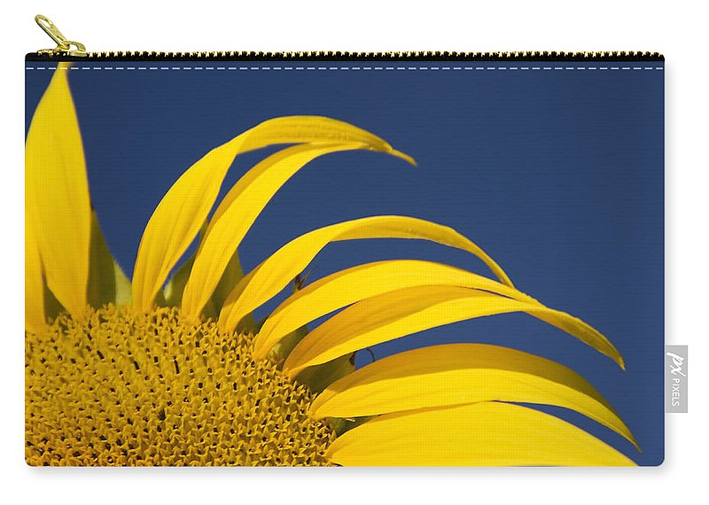 3scape Carry-all Pouch featuring the photograph Sunflower by Adam Romanowicz