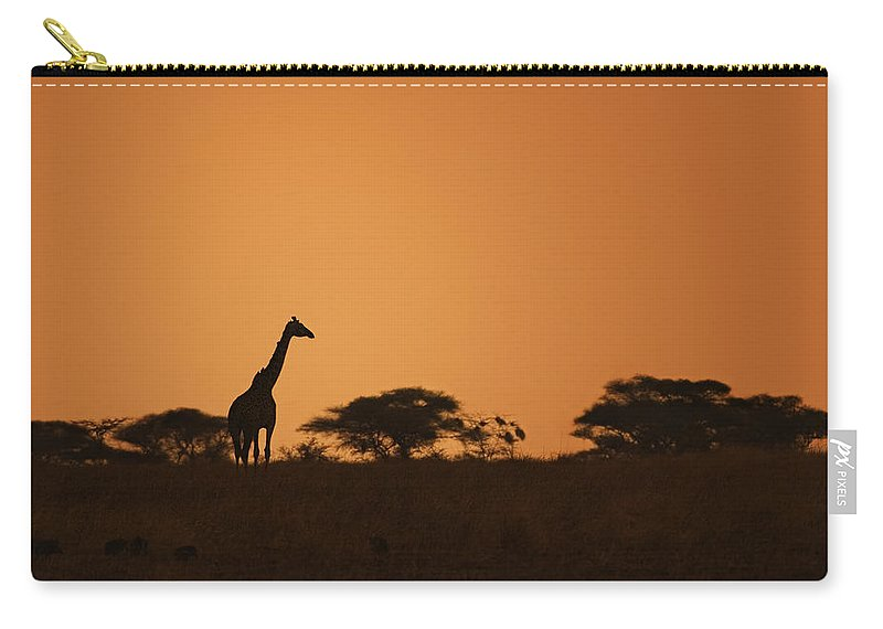 3scape Carry-all Pouch featuring the photograph Sunset Over Tarangire by Adam Romanowicz