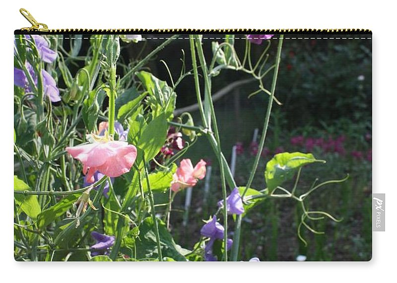 Sweet Peas Carry-all Pouch featuring the photograph Sweet Pea Climbers by Vicki Cridland