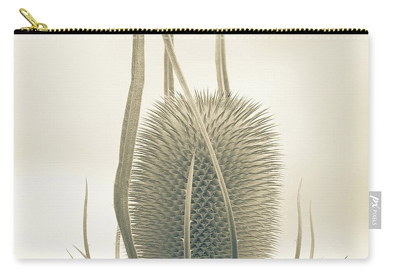 Teasel Carry-all Pouch featuring the photograph Unexpected Direction by Bear R Humphreys
