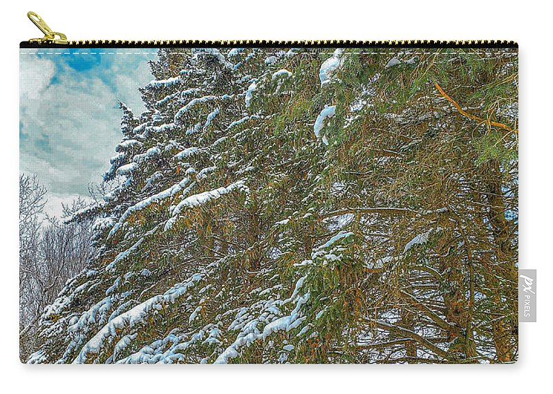 Nature Carry-all Pouch featuring the photograph Winter trees by M Forsell