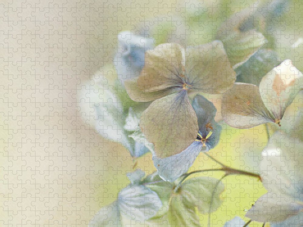 Hydrangea Puzzle featuring the photograph Hydrangea by Jill Ferry