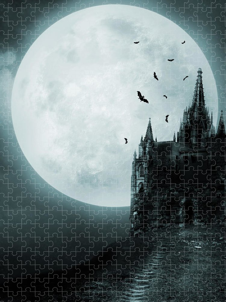 Gothic Style Puzzle featuring the photograph Old Castle by Vladgans