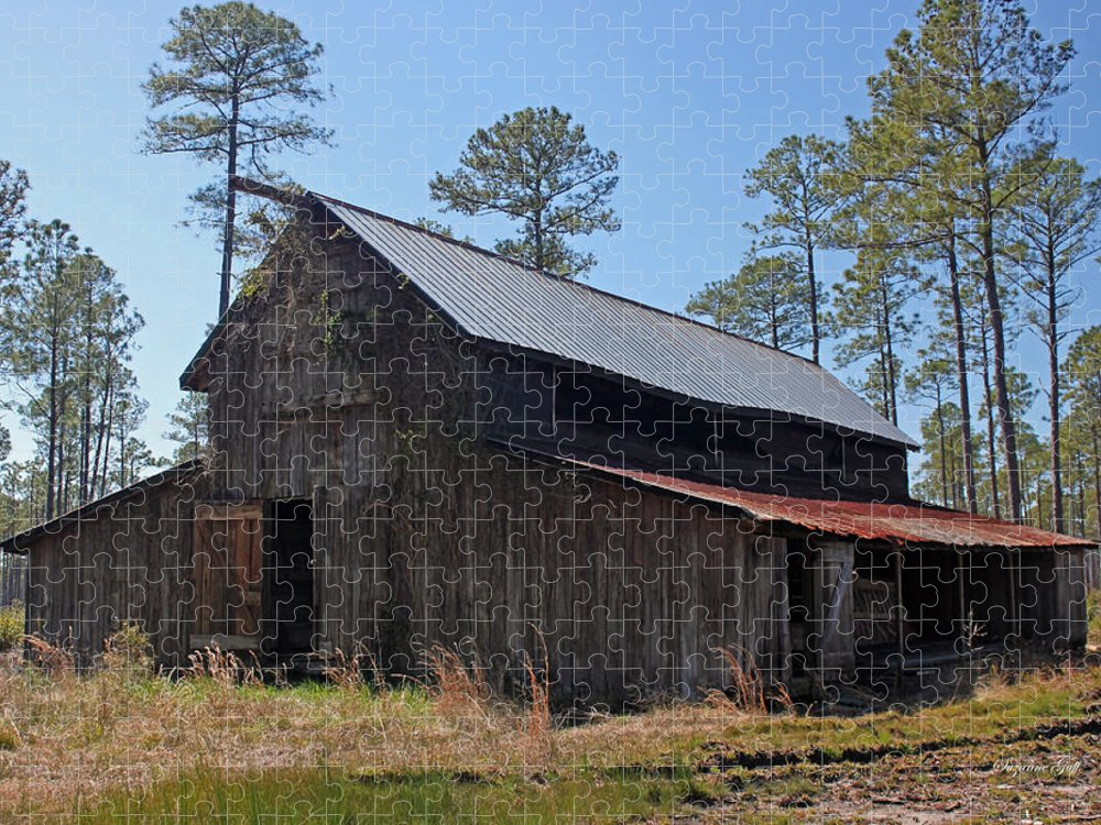 Barn Puzzle featuring the photograph Abandoned Carolina Barn by Suzanne Gaff