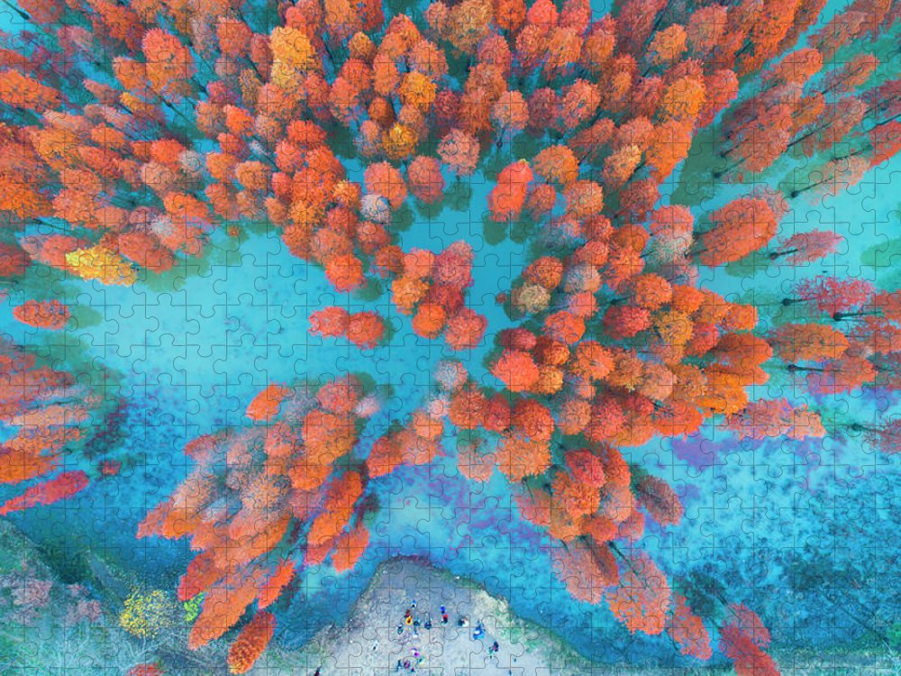 Tranquility Puzzle featuring the photograph Aerial Drone View With Fir Tree Fall by Yaorusheng