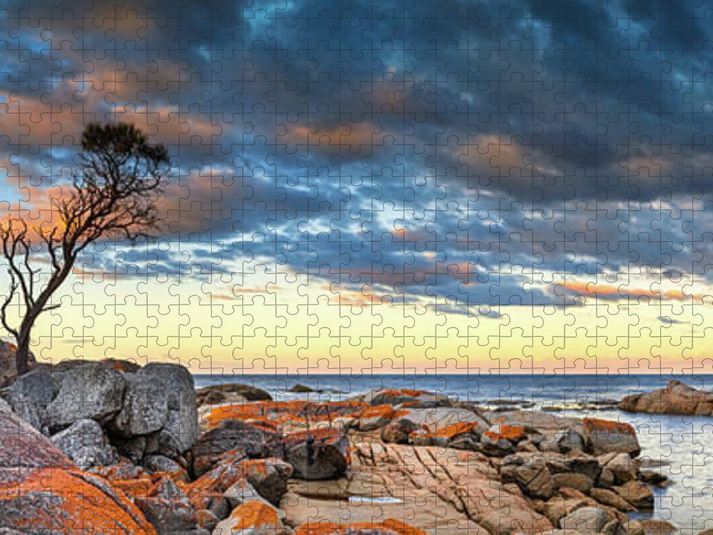 Scenics Puzzle featuring the photograph Binalong Bay by Bruce Hood