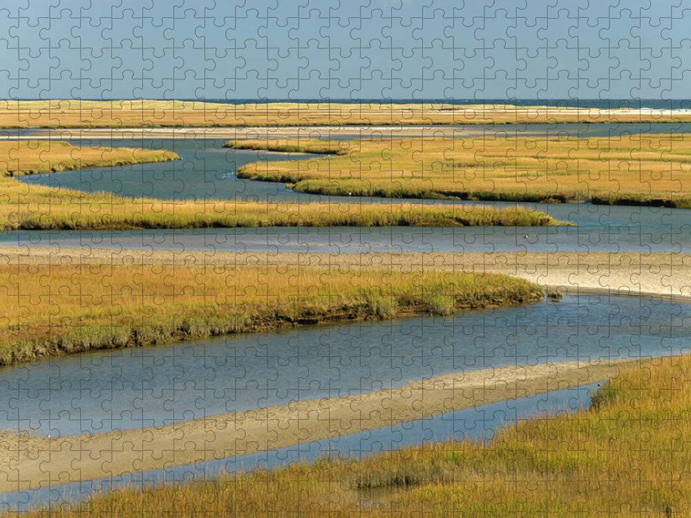 Grass Puzzle featuring the photograph Cape Cod Wetlands by Frankvandenbergh