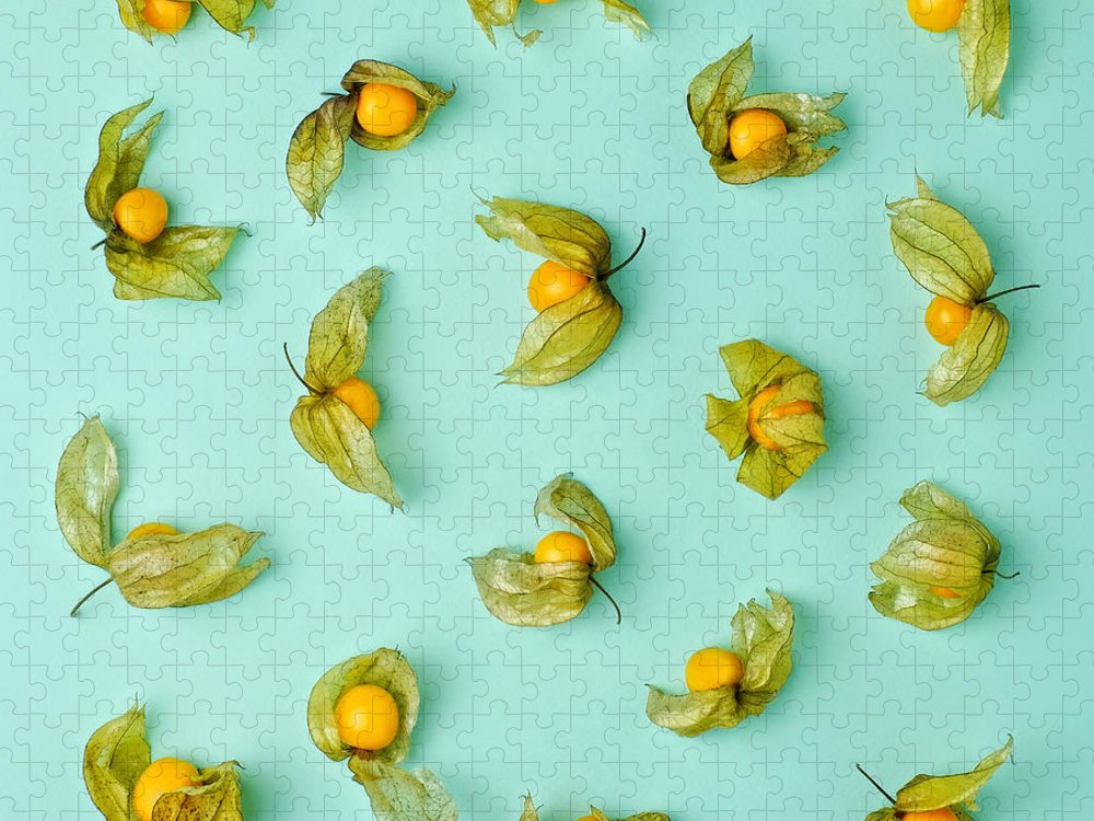 Winter Cherry Puzzle featuring the photograph Cape Gooseberries Physalis, Winter by Juj Winn