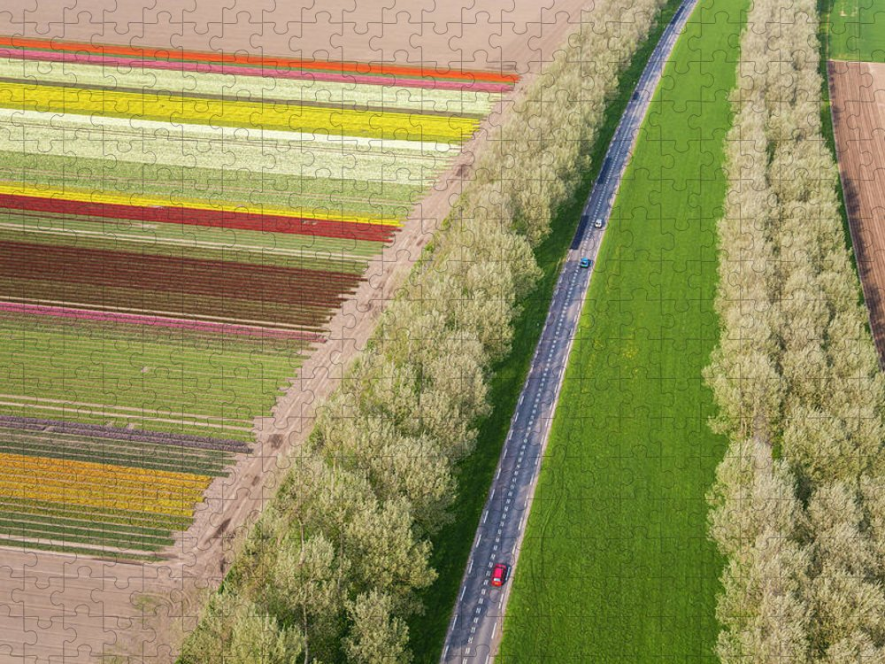 Scenics Puzzle featuring the photograph Car On Road Near Tulip Fields, Holland by Peter Adams