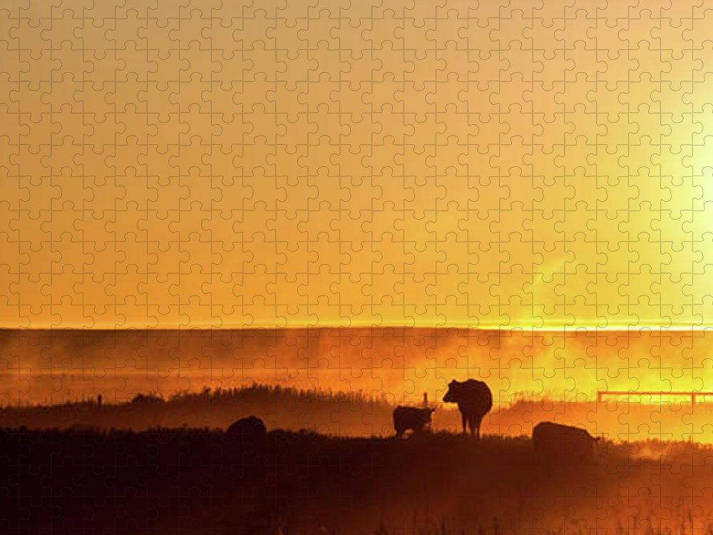Scenics Puzzle featuring the photograph Cattle Silhouette Panorama by Imaginegolf