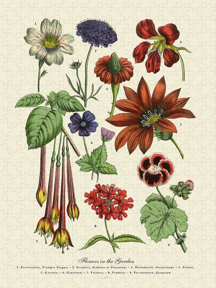 1880-1889 Puzzle featuring the digital art Exotic Flowers Of The Garden, Victorian by Bauhaus1000