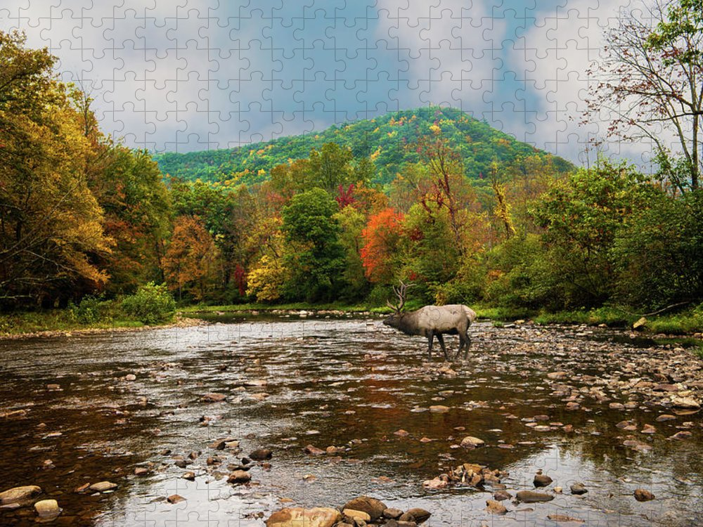 Tranquility Puzzle featuring the photograph Fall Mountain Stream With Elk Crossing by Larry Keller, Lititz Pa.