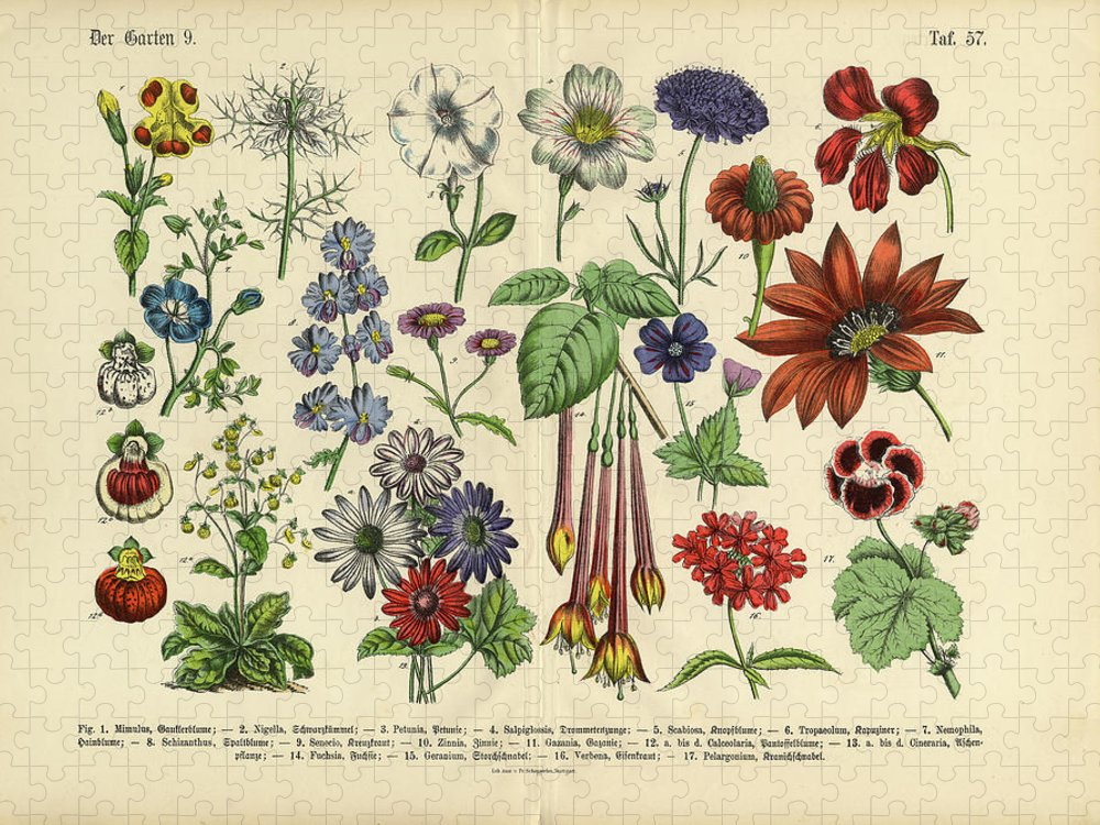 Lantana Puzzle featuring the digital art Flowers Of The Garden, Victorian by Bauhaus1000