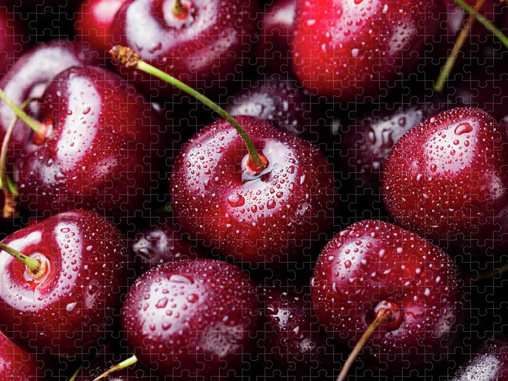 Cherry Puzzle featuring the photograph Fresh Ripe Black Cherries Background by Anna Pustynnikova