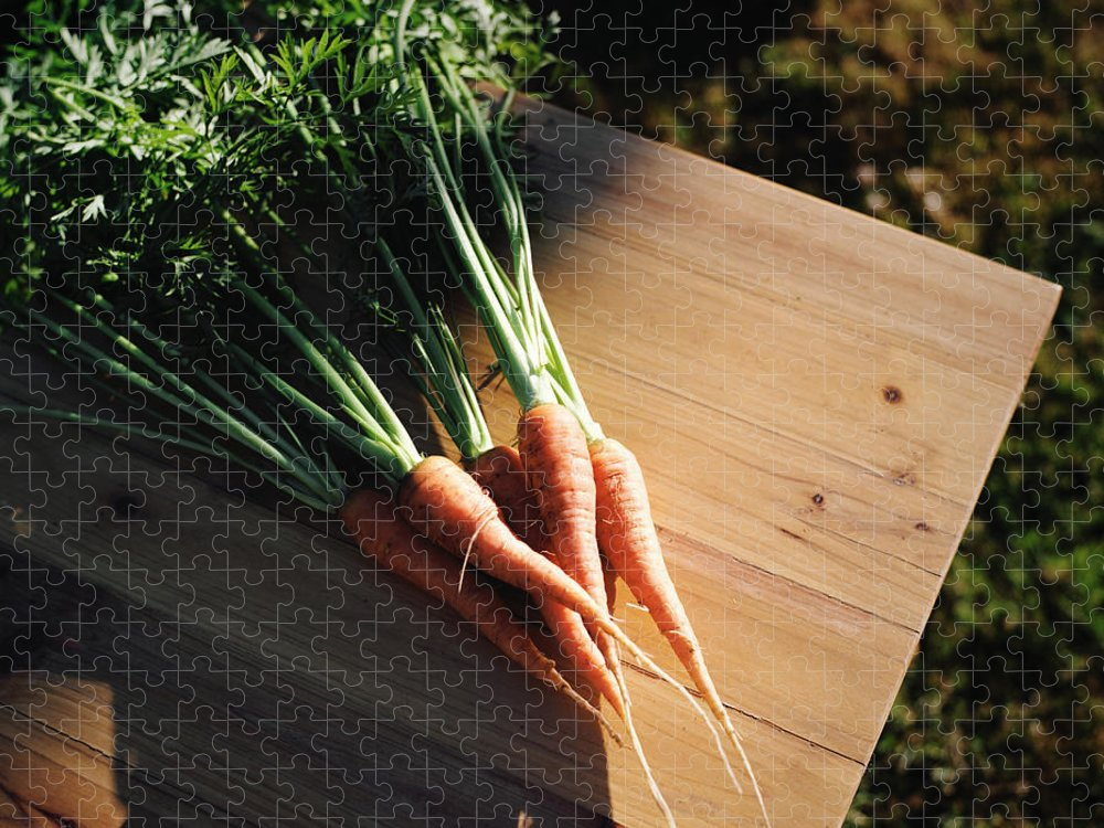 Five Objects Puzzle featuring the photograph Garden Carrots On Sunny Stool by Danielle D. Hughson