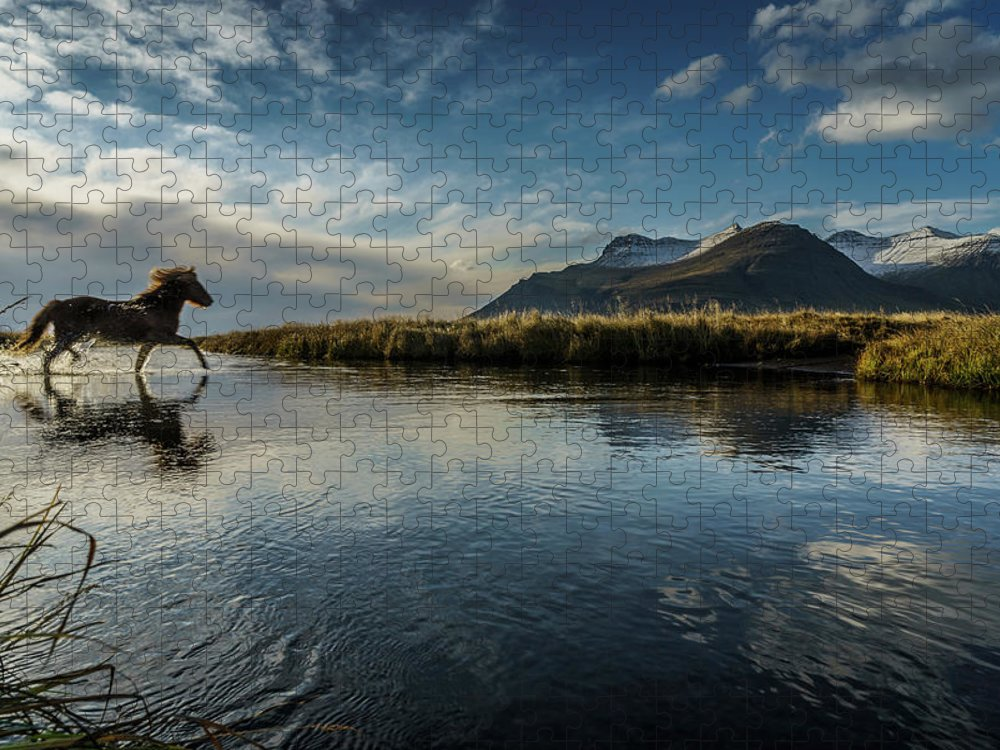 Majestic Puzzle featuring the photograph Horse Crossing A River, Iceland by Arctic-images