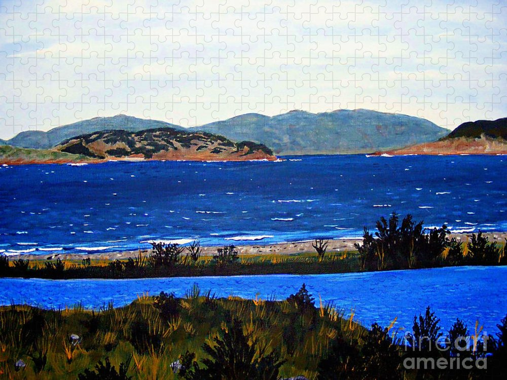 Islands Puzzle featuring the painting Iona formerly Rams Islands by Barbara Griffin