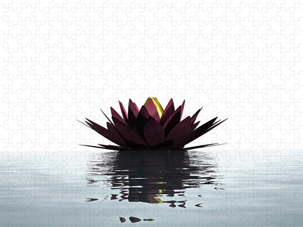 White Background Puzzle featuring the photograph Lotus Flower Floating On The Water by Artpartner-images