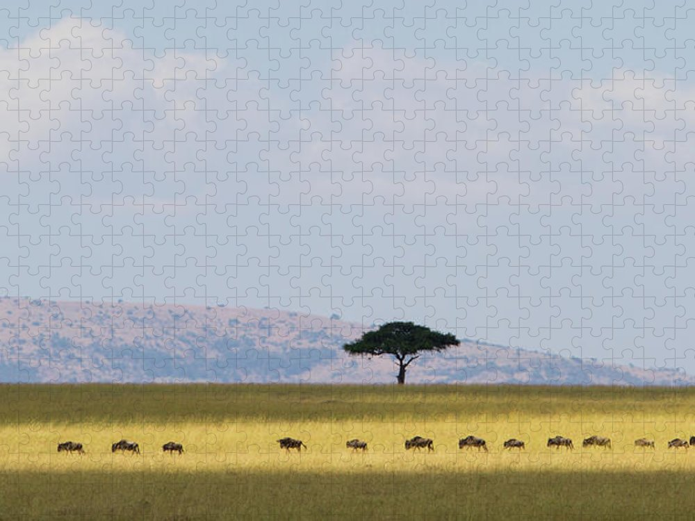 Kenya Puzzle featuring the photograph Masai Mara Wildebeest Migration by Universal Stopping Point Photography