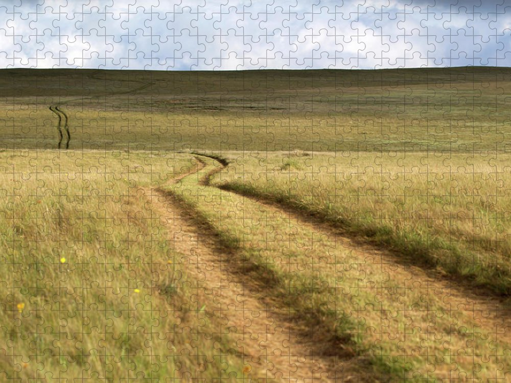 Scenics Puzzle featuring the photograph Meandering Path Through The Hills Of by Morgan Trimble
