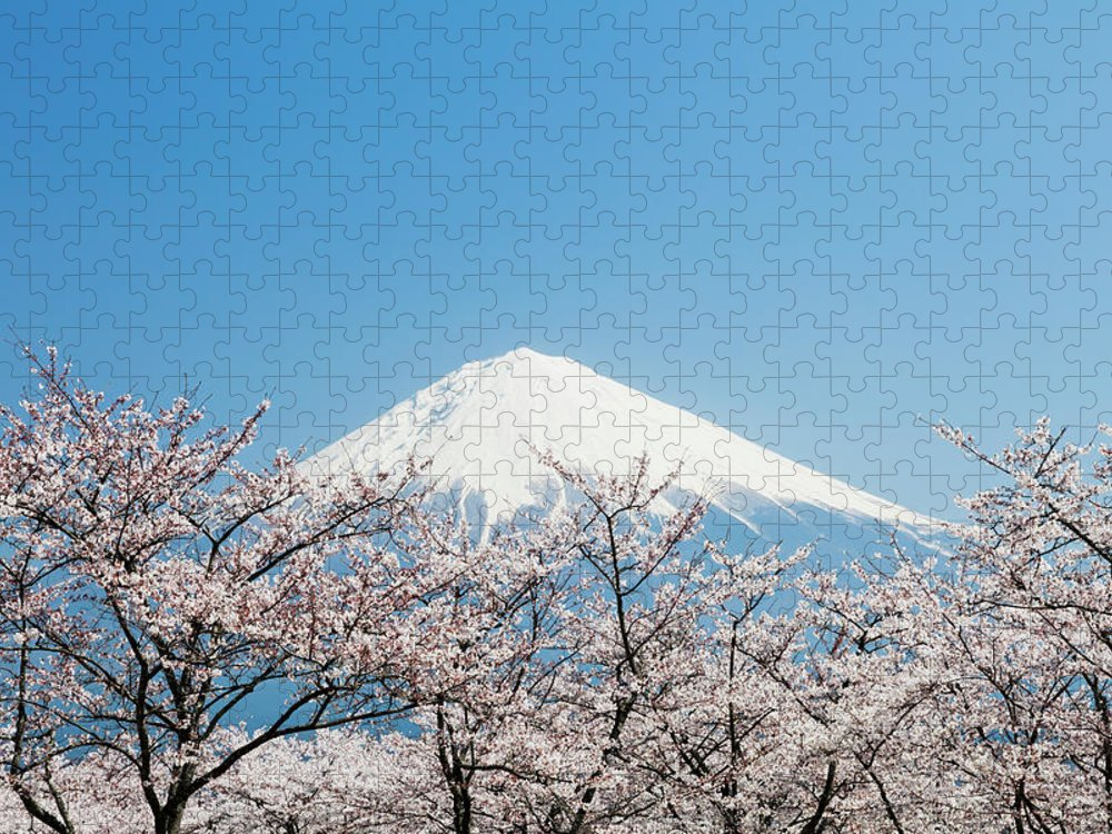 Scenics Puzzle featuring the photograph Mount Fuji & Cherry Blossom by Ooyoo