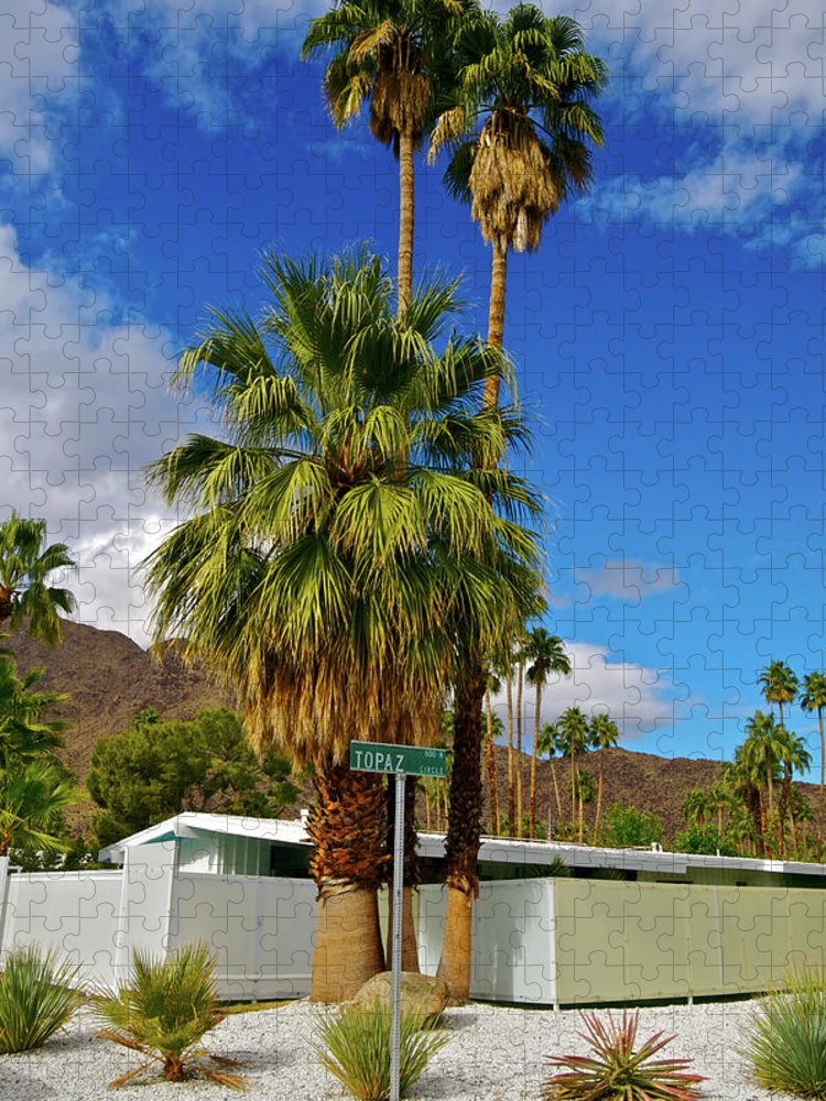 Fan Palm Tree Puzzle featuring the photograph Mountains, Plants & Mid-century Home In by Jaylazarin