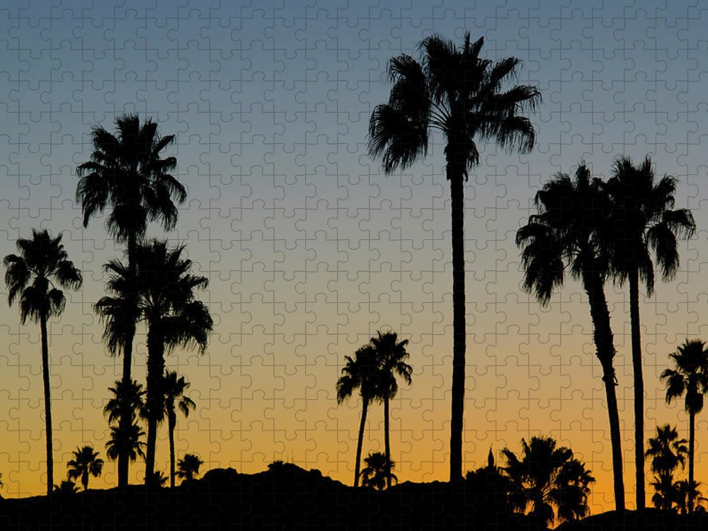 Scenics Puzzle featuring the photograph Palm Trees At Sunset by Chapin31
