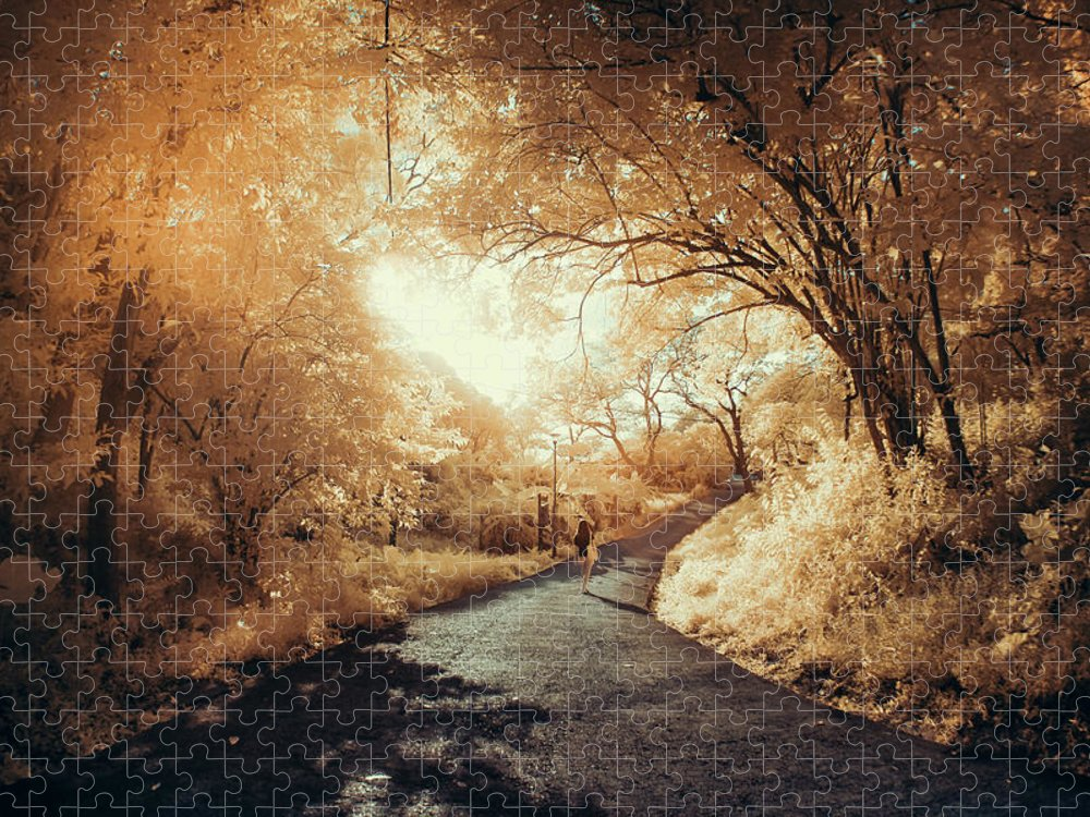 Shadow Puzzle featuring the photograph Pathway To Wonderland by D3sign