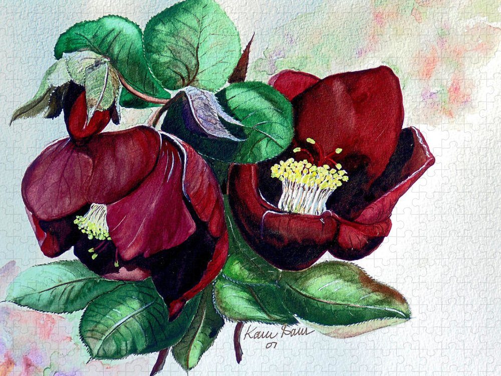Red Helleborous Painting Flower Painting  Botanical Painting Watercolor Painting Original Painting Floral Painting Flower Painting Red Painting  Greeting Painting Puzzle featuring the painting Red Helleborous by Karin Dawn Kelshall- Best