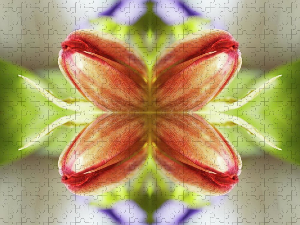 Tranquility Puzzle featuring the photograph Red Tulips by Silvia Otte