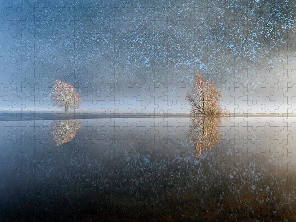 Scenics Puzzle featuring the photograph Reflections In A Lake In Winter, French by Jean-pierre Pieuchot