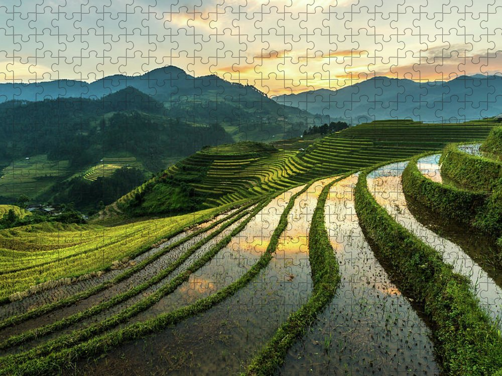 Scenics Puzzle featuring the photograph Rice Terraces At Mu Cang Chai, Vietnam by Chan Srithaweeporn