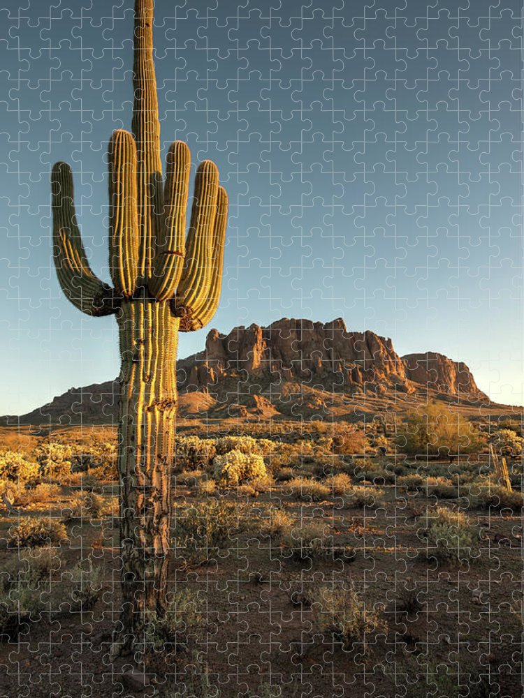 Saguaro Cactus Puzzle featuring the photograph Saguaro Cactus And Superstition by Kjschoen