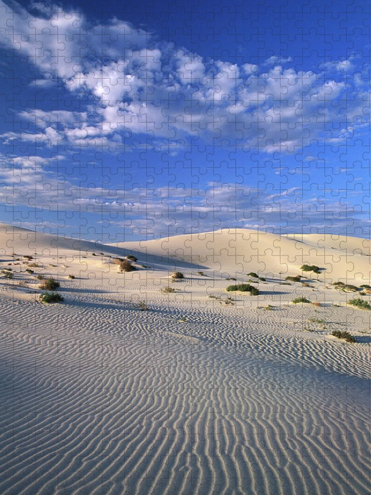 Sand Dune Puzzle featuring the photograph Sand Dunes Carved By Wind by John W Banagan