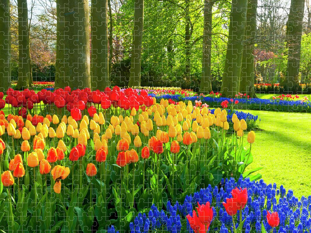 Flowerbed Puzzle featuring the photograph Spring Flowers In A Park by Jacobh