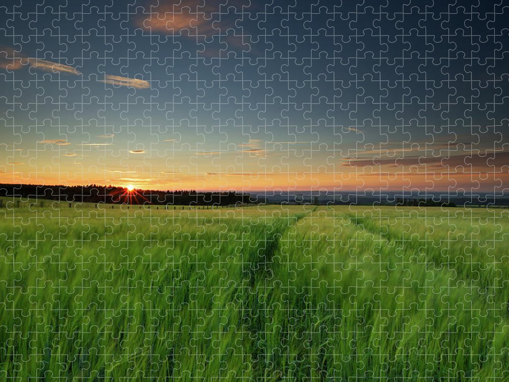 Tranquility Puzzle featuring the photograph Swaying Barley At Sunset by By Simon Gakhar