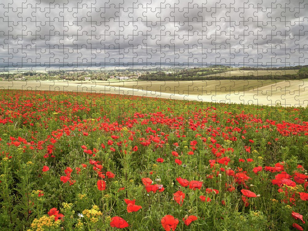 Scenics Puzzle featuring the photograph Sweeping Golden Fields by Getty Images