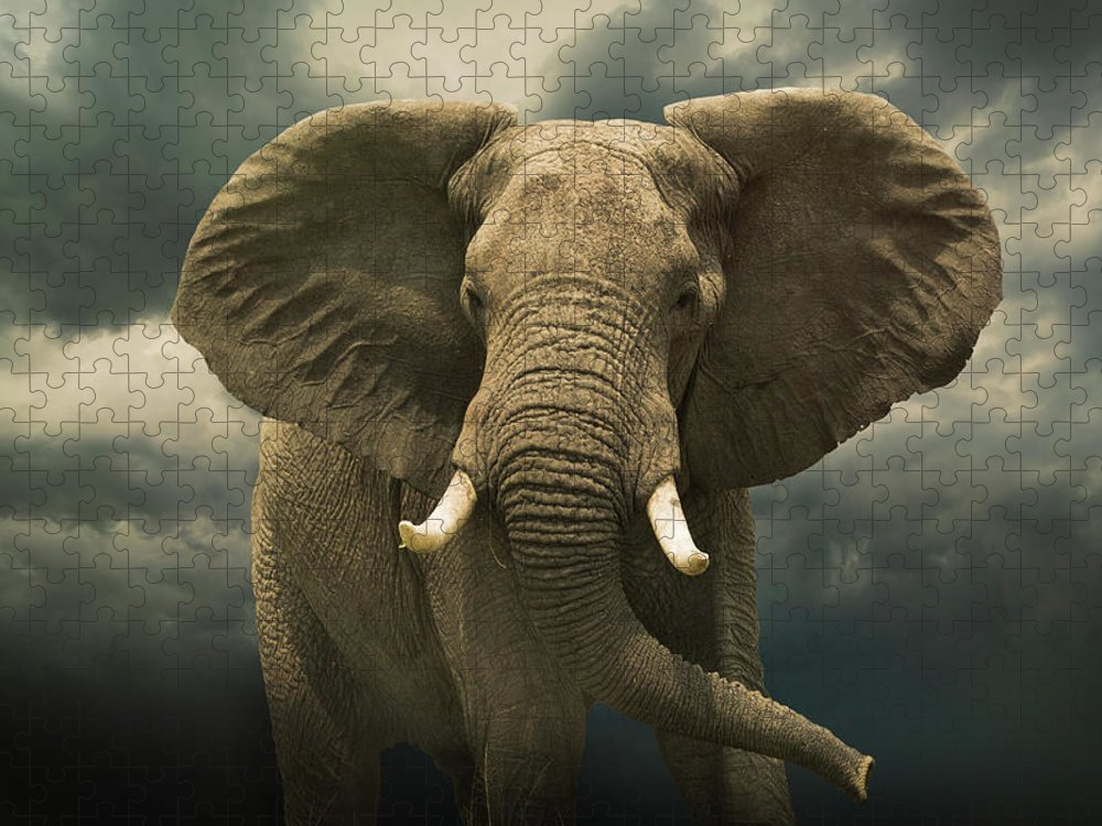 Kenya Puzzle featuring the photograph Threatening African Elephant Under by Buena Vista Images