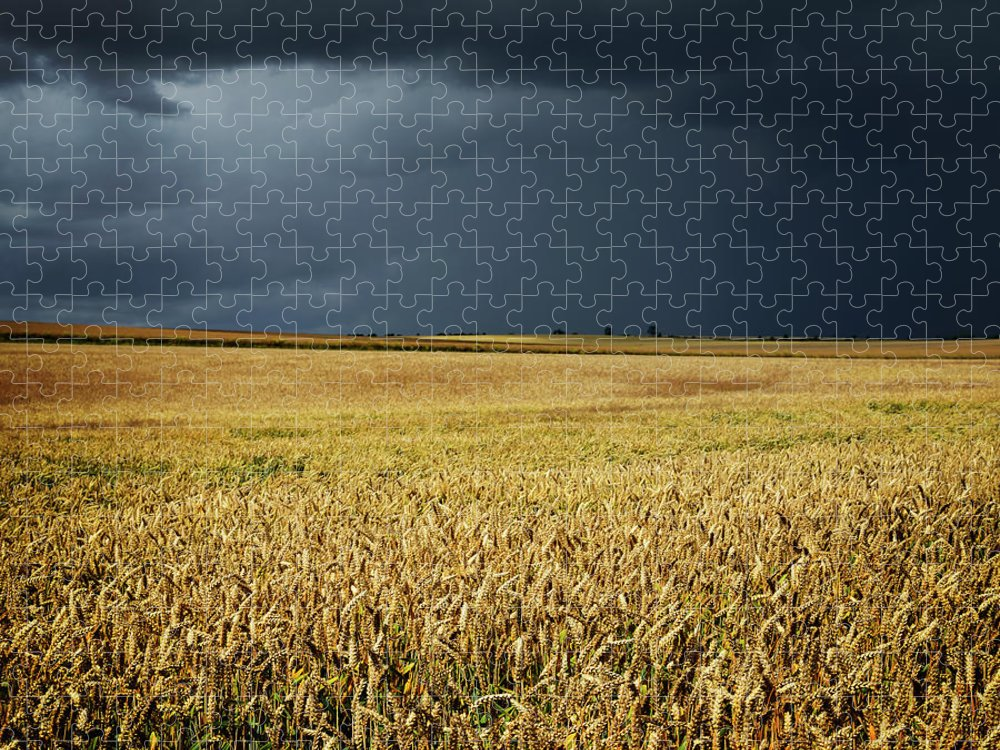 Scenics Puzzle featuring the photograph Thunderstorm Clouds Over Wheat Field by Avtg
