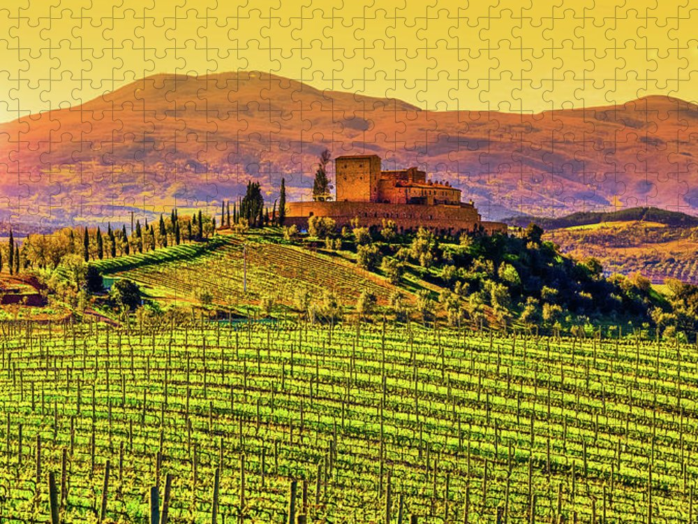 Scenics Puzzle featuring the photograph Vineyard In Tuscany by Deimagine