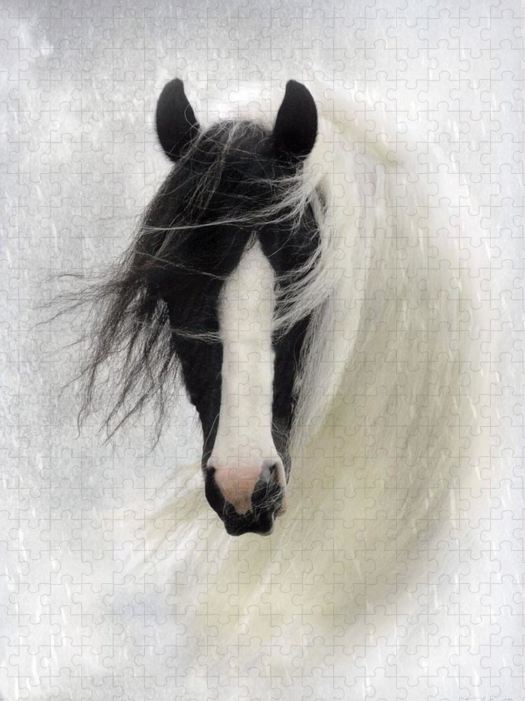 Horses Puzzle featuring the photograph Wisteria by Fran J Scott